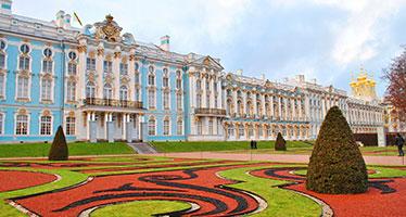 Ветклиника в городе Пушкин